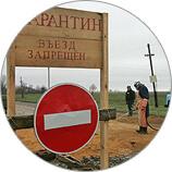 Дератизация в Москве