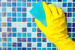 Народные рецепты борьбы с грибком в квартире на стенах