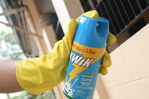Популярные методы борьбы с насекомыми в доме